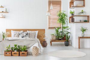¿Es malo dormir con plantas?